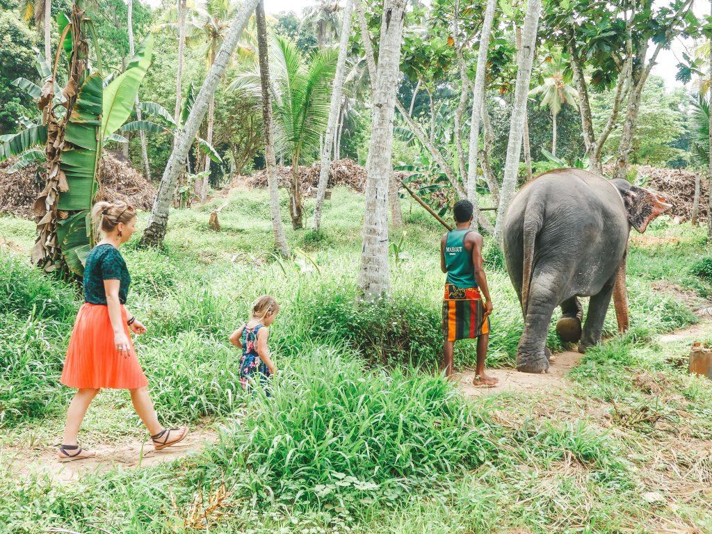 Lopen met olifanten Sri Lanka met kinderen