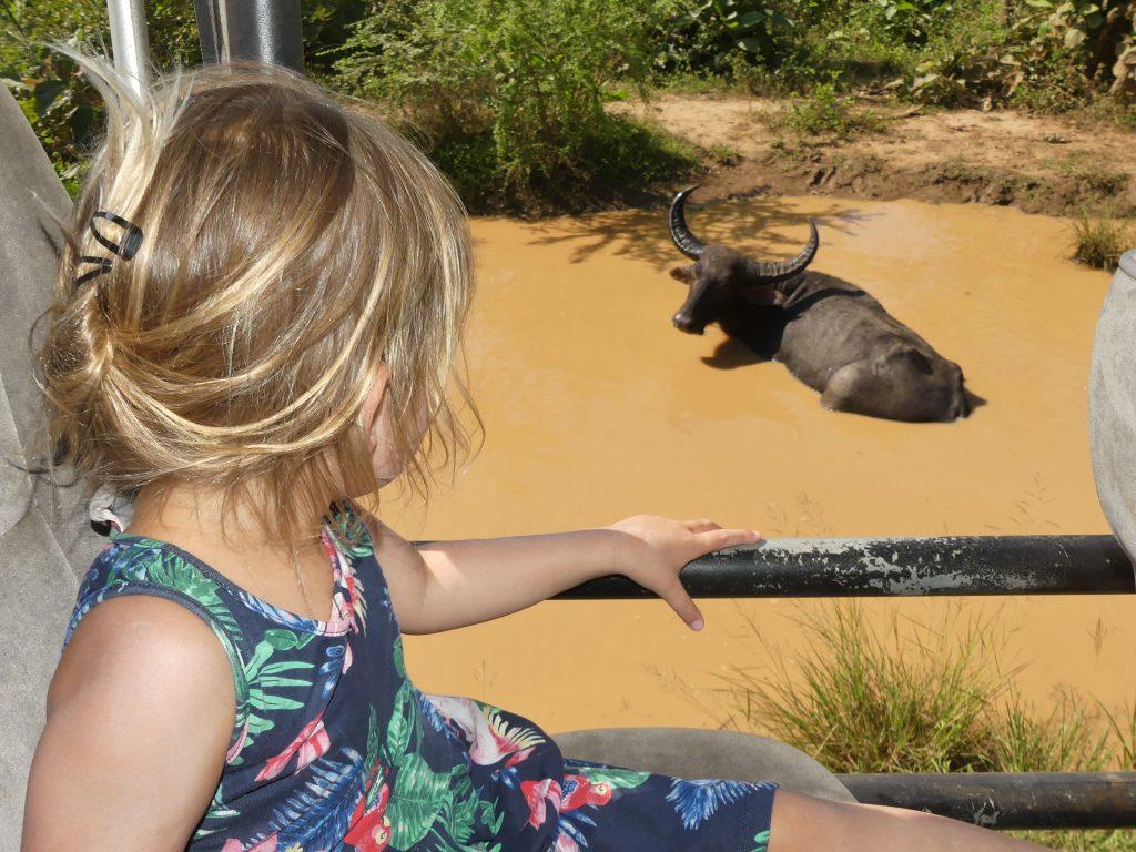 Safari Udawalawe Sri Lanka met kinderen