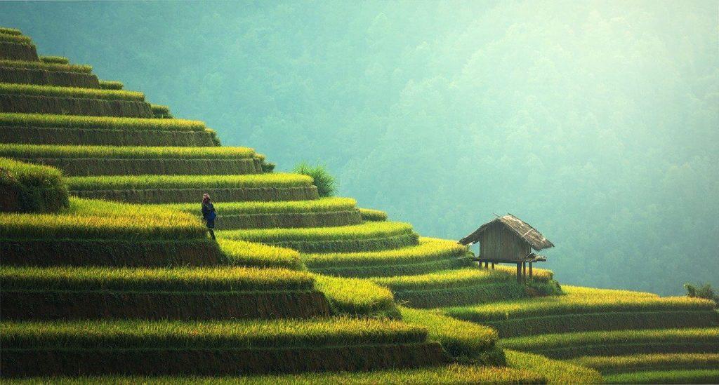 Maleisie reis met gezin goedkoop