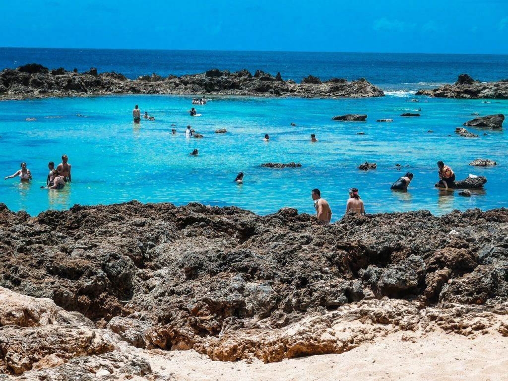Snorkelen naar schildpadden hawaii met kinderen en gezin