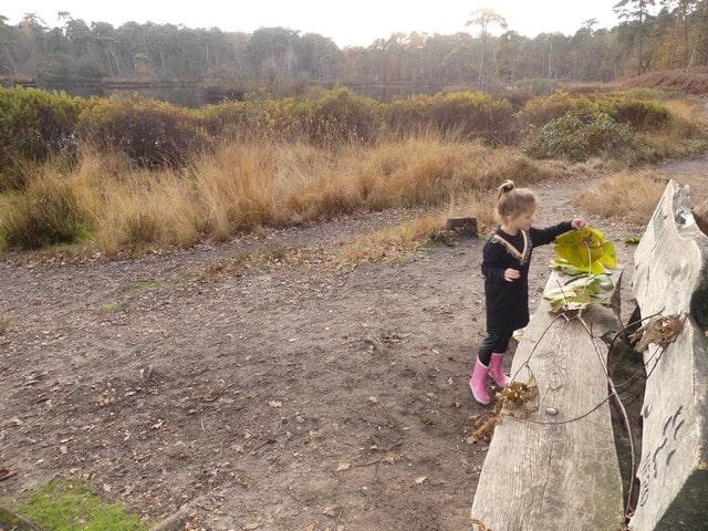 Oisterwijkse bossen en vennen met kinderen