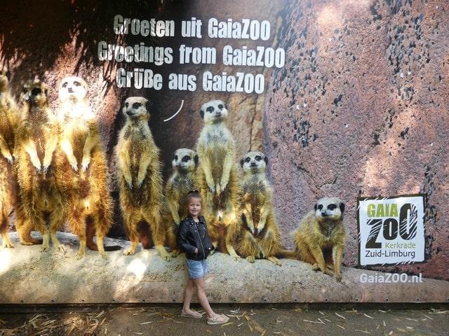 Gaiazoo met kinderen