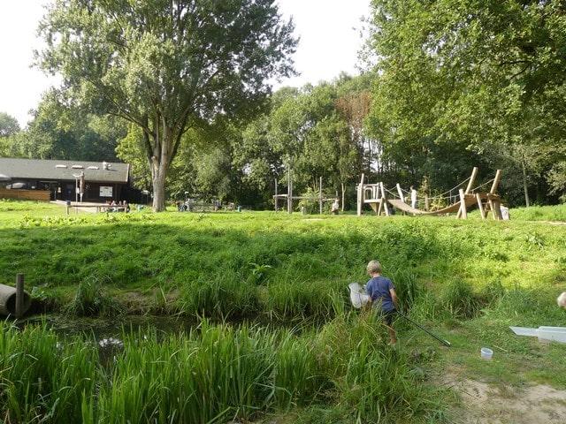 Biesbosch met kinderen in Dordrecht